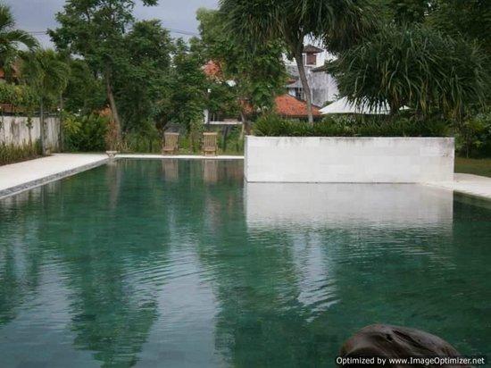 Sayang Sanur Terrace House:                                     Long pool!