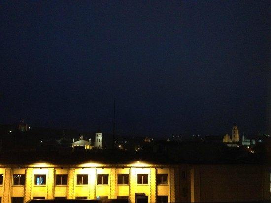 Novotel Vilnius:                   view