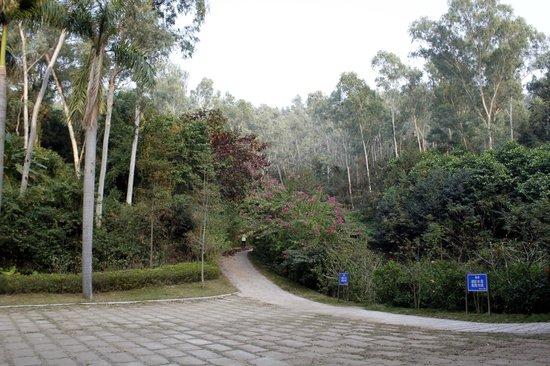 笔架山公园