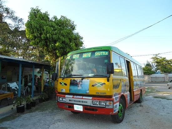 One Love Bus Bar Crawl:                   one love bus,negril