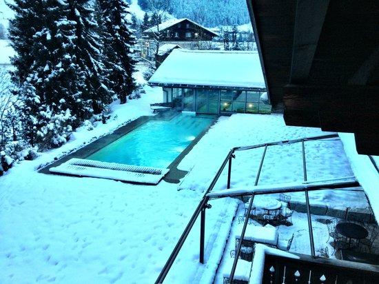 Hotel Alpine Lodge Gstaad - Saanen: Aussicht