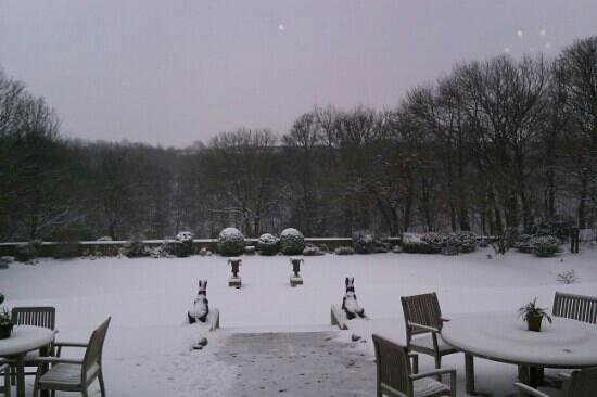 Woodlands Hotel Leeds:                   snowy Woodlands. nothing but fox prints in the snow