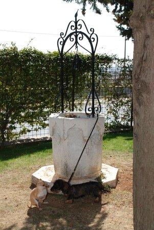 Relais San Michele: panorama