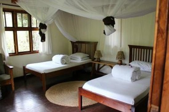 Moivaro Lodge:                   Rooms