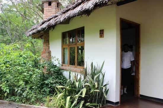Moivaro Lodge :                   Lodge Grounds