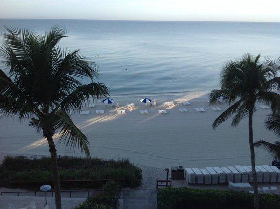 view from the restaurant area picture of laplaya beach. Black Bedroom Furniture Sets. Home Design Ideas