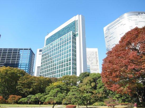 โรงแรมคอนราด โตเกียว: Hotel