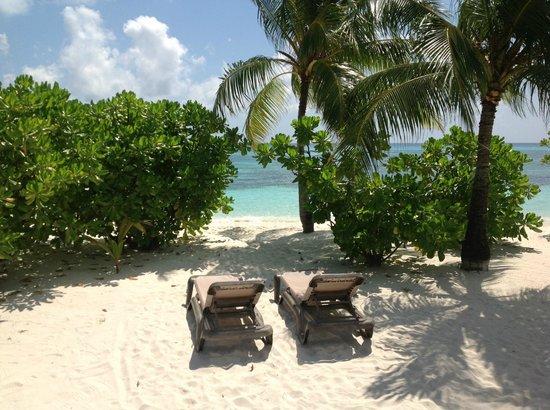 Kuredu Island Resort & Spa:                   Beach view
