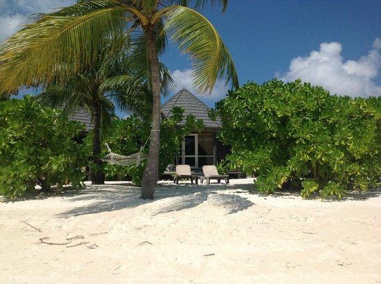 Kuredu Island Resort & Spa:                   Room 137