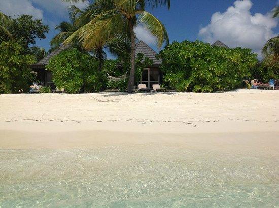 Kuredu Island Resort & Spa:                   Room 137 from the sea