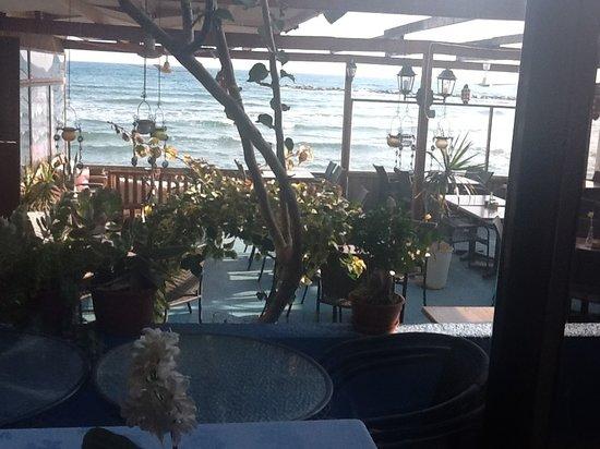 Mer Bleue Beach Restaurant : Mer Bleue restaurant