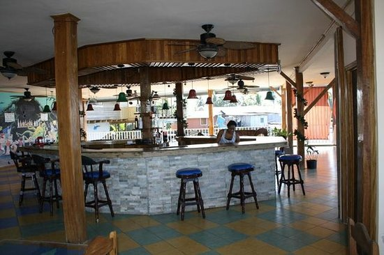 Hotel Oasis: Bar