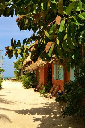 Sea Dreams Hotel: Hotel entrance