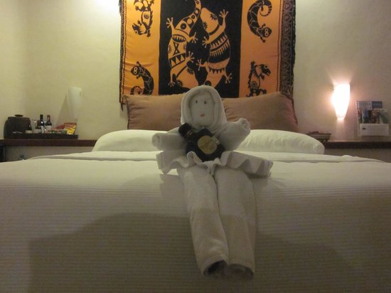La Tortuga Hotel & Spa:                   Loved the nightly towel art to greet us on our returns from dinner