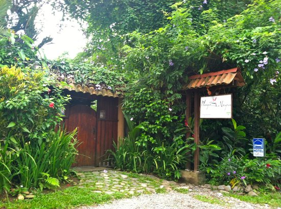 Playa Negra Guesthouse:                   The entrance