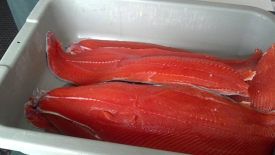 Newport Tradewinds:                   Fresh wild salmon caught and filleted then packed for the trip home.
