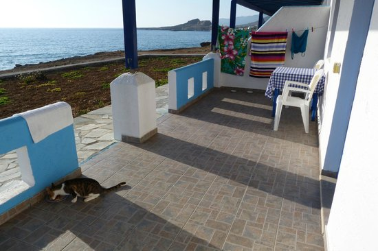 Eleni Studios:                   large terrace overlooking sea