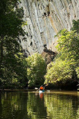 Krabi Kayak:                   PP Tripping Company3
