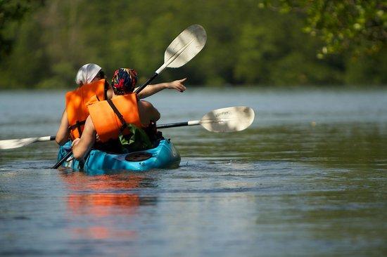 Krabi Kayak:                   PP Tripping Company2
