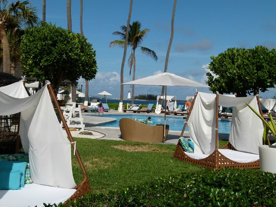 British Colonial Hilton Nassau:                   Poolside view
