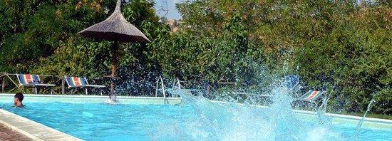 Agriturismo La Volpe e l'Uva: piscina