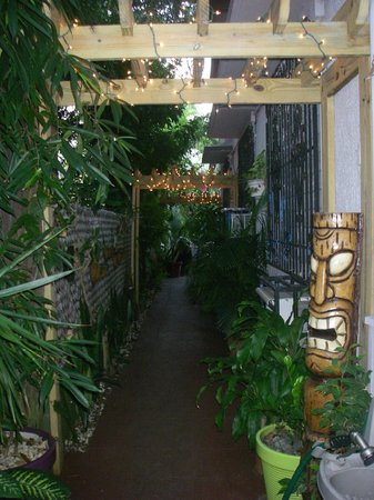 Coqui del Mar Guest House:                   Path to Patio