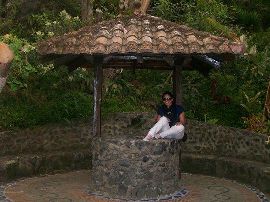 ساماري سبا ريزورت: explorando 