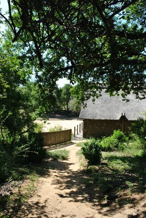Rhino Post Safari Lodge:                   view on the commune area and water hole