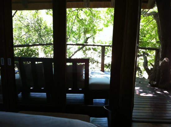 Rhino Post Safari Lodge:                   view of the terrace