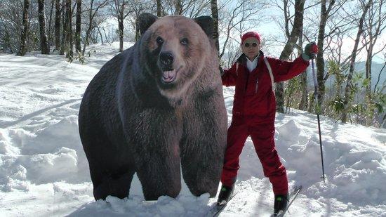 White Pia Takasu Ski Area : クワッド降りたら熊さんが居たよ。