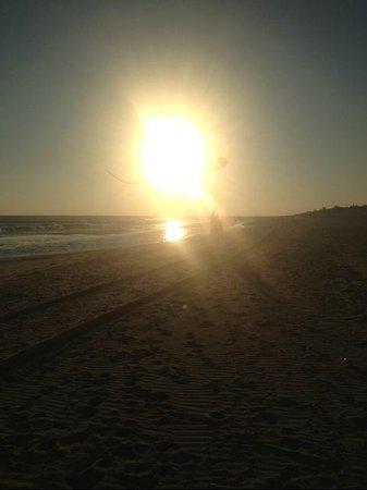 写真Cooper's Beach枚