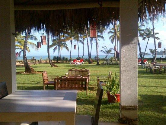 Casa Grande Beach Hotel : Vue depuis MA place de petit déjeuner ...