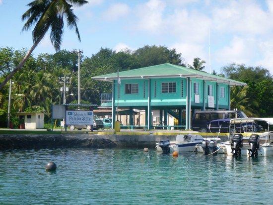 Dolphin Bay Resort & Peleliu Divers :                   Arriving Peleliu