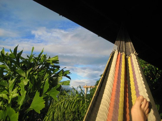 Tranquilseas Eco Lodge and Dive Center:                   Vew from the hammock