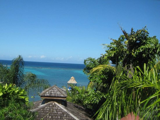 Tranquilseas Eco Lodge and Dive Center:                   View from Tree Frog