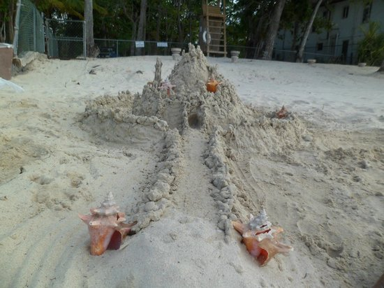 Nirvana on the Beach: sandcastle