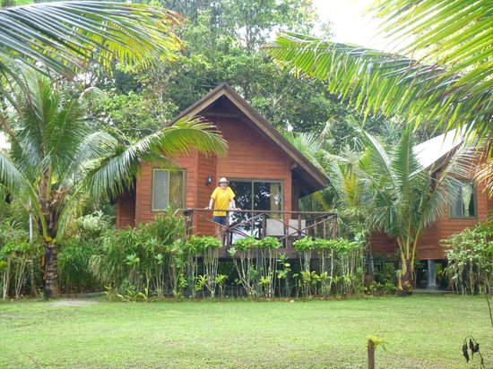 Dolphin Bay Resort & Peleliu Divers :                   Front of our Cabana