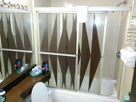 Red Carpet Inn Houston:                   Bathroom