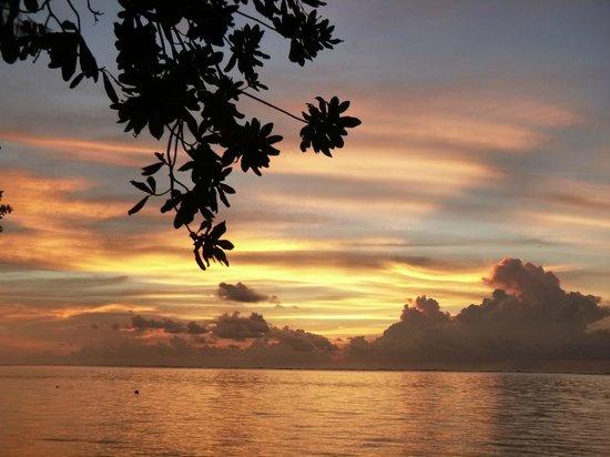 Dolphin Bay Resort & Peleliu Divers :                   A beautiful sunset