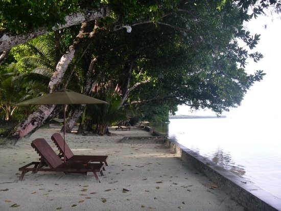 Dolphin Bay Resort & Peleliu Divers :                   the waterfront
