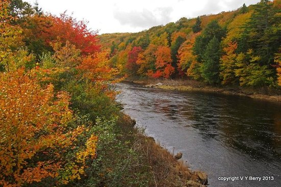 St. Mary's River Lodge : St.Mary's River, Sherbrooke