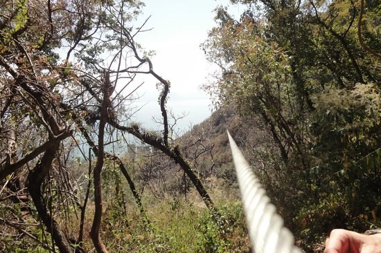 Hotel Reserva Natural Atitlán:                   The longest canopy slide in the American Continent - 850 mt