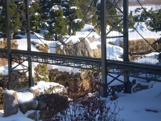Taltree Arboretum and Gardens: After winter snow