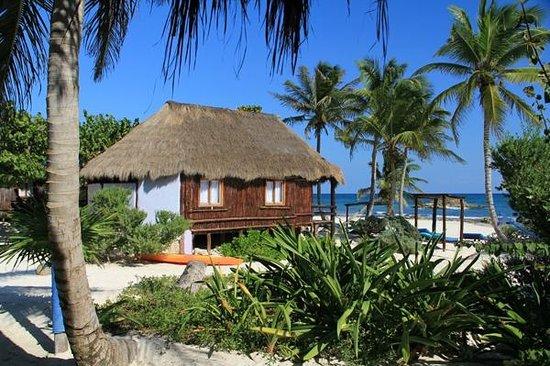 Hemingway Eco Beach Resort: View from our cabaňa.