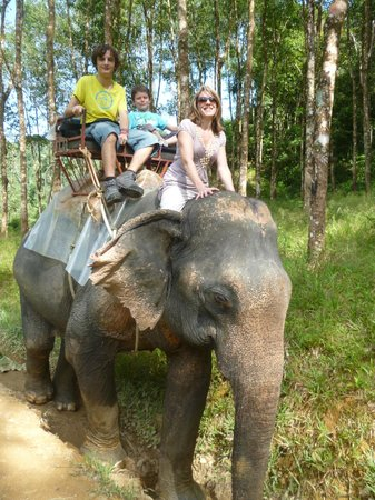 Khao Sok Las Orquideas Resort:                   Elephant Tour