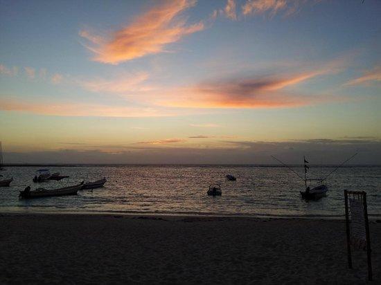 Hotel Akumal Caribe: Akumal morning