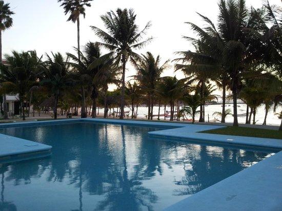 Hotel Akumal Caribe: Pool