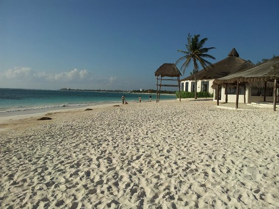 Hotel Akumal Caribe: Beautiful beach