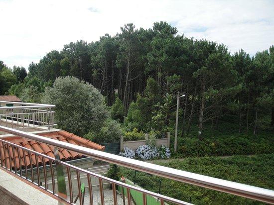 Capricho de Bascuas: Vista de la terraza