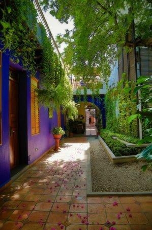 Casa de Isabella - a Kali Hotel: Garden